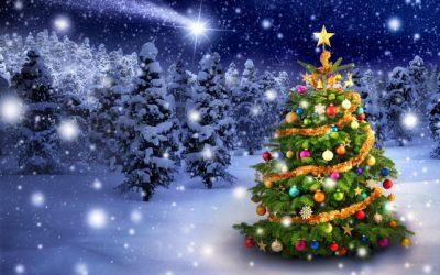Godziny otwarcia SCT wdni świąteczne